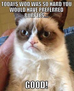 burpee6